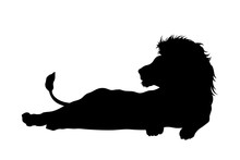 Black Silhouette Of Lying Lion...