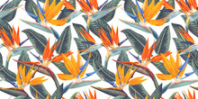 ,Seamless Pattern With Tropica...