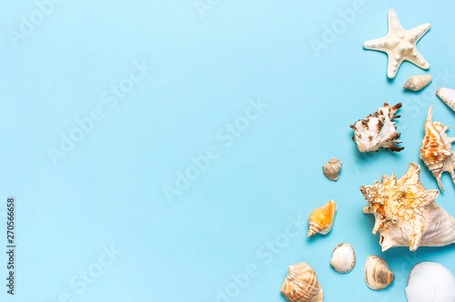 Summer concept, marine background. Different seashells and starfish on pastel blue background. Top view, flat lay, copy space. Sea summer vacation background. Travel, marine souvenir