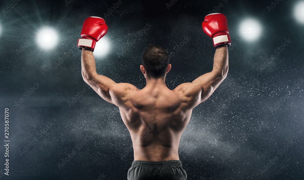 Fototapeta Boxer champion enjoying his victory on lights