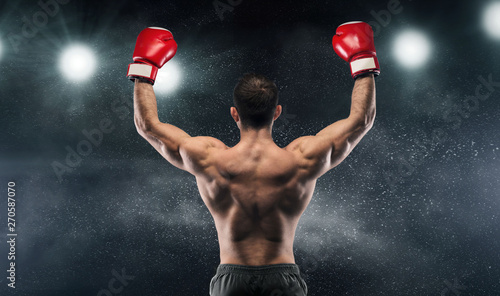 Photo Boxer champion enjoying his victory on lights