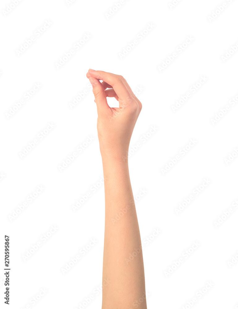 Fototapeta womens hand hold something isolated