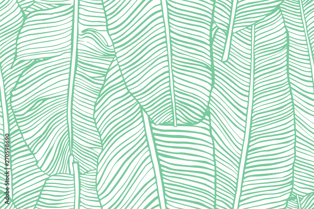 Fototapety, obrazy: Tropical leaves. Seamless texture with banana leaf. Hand drawn tropic foliage. Exotic green background.