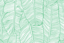 Tropical Leaves. Seamless Text...