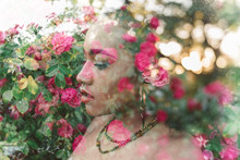 Double Exposure Of A Woman In A Rose Garden