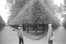 Tourists, A Girl And A Boy In A Park With Figuratively Clipped Trees