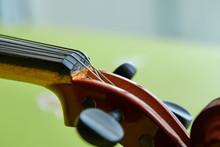 Violin Head On Green Background