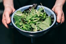 Holding Fresh Salad