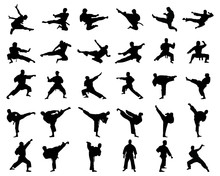 Black Silhouettes Of Karate Fi...
