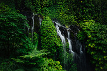 Little Waterfall In Tropical G...