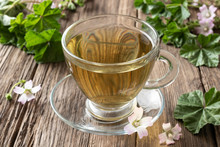 A Cup Of Mallow Tea With Fresh...
