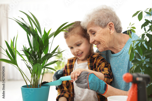 Photo sur Toile Kiev Little girl and her grandmother taking care of plants indoors