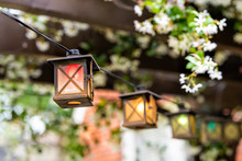 Patio Outdoor Spring Garden In Backyard Of Home With Closeup Of Red Lantern Lamps Lights Hanging From Pergola Wooden Gazebo And Plants White Flowers