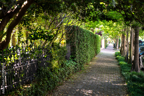 Tablou Canvas New Orleans, USA Old street historic Garden district in Louisiana famous town ci
