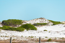 Gulf Of Mexico Sand Dunes At Okaloosa Island In Emerald Coast, Florida Panhandle With Sea Oats, Grass And Plants In Summer By Ocean Sea