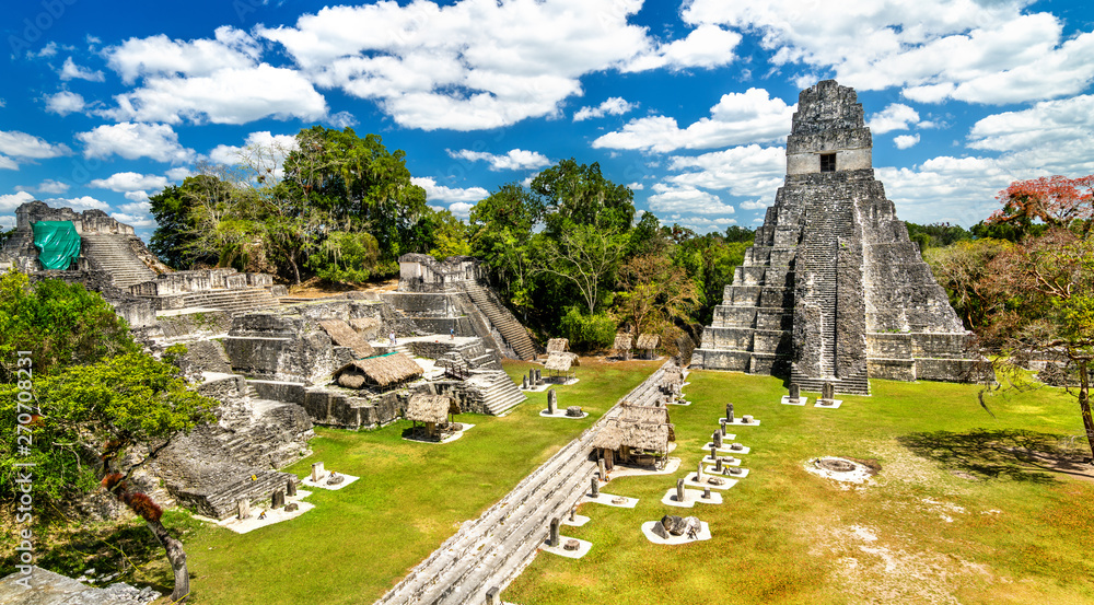 Fototapety, obrazy: Temple of the Great Jaguar at Tikal in Guatemala