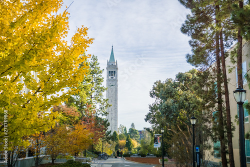 Fotomural Autumn colored trees in the UC Berkeley campus; Sather Tower (Campanile) in the