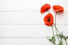 Beautiful Red Poppy Flowers On...