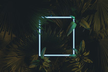 3d Rendering Of White Square Neon Light With Tropical Leaves.. Flat Lay Of Minimal Nature Style Concept
