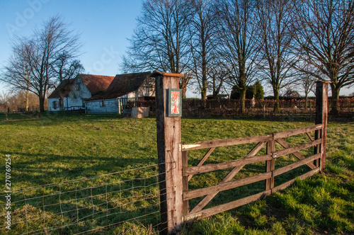 Impression of the Flemish country side on a sunny winter morning Wallpaper Mural
