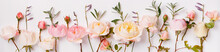 Pink And White English Roses Panoramic Border, Banner, Wedding Romantic Background. Flat Lay.
