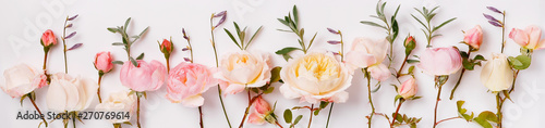 Pink and white English roses panoramic border, banner, wedding romantic background Canvas Print