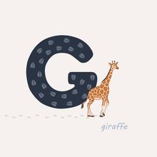 Vector Illustration. Blue Letter G With Giraffes Footprints, A Cartoon Giraffe. Animal Alphabet.