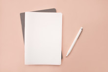White Lies Notebook The Gray Notebook In The Form On A Coral Pink Background With White Handle Lying Next Closeup