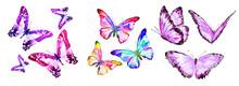Beautiful Color Butterflies,se...