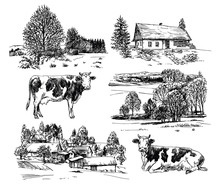 Farm, Cows, Rural Houses. Hand Drawn Set.