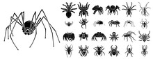 Spider Icons Set. Simple Set O...
