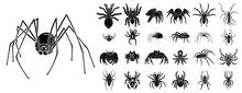 Spider Icons Set. Simple Set O...
