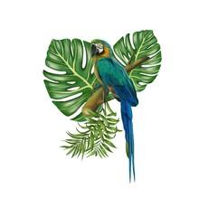 Parrot Botanical Green Leaf Ha...