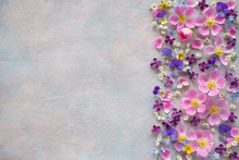 Floral Background With Spring Flowers And Space For Text.