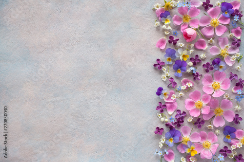 Valokuva Floral background with spring flowers and space for text.