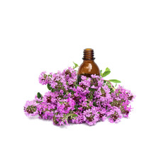 Flowers Thymus Vulgaris ( Common Thyme, German Thyme, Garden Thyme Or Just Thyme ) With Pharmaceutical Bottle On White Background