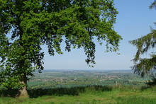 The Rolling Hills Of The Dunstable Downs - Whipsnade, Bedfordshire, England, UK
