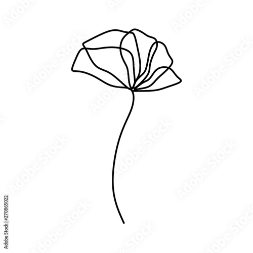 poppy flower one continuous line drawing minimalist design - 270865022