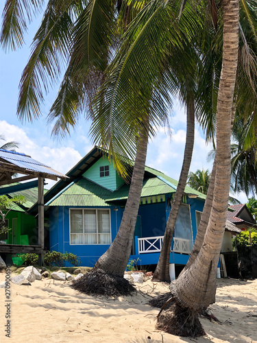 wooden hut under palm trees on a tropical white beach