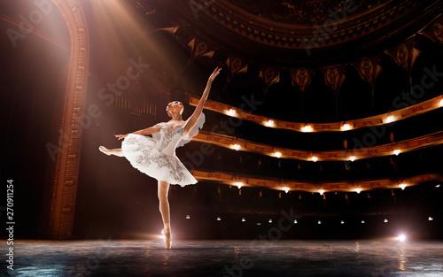 Ballet Canvas-taulu