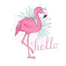 Flamingo Bird Illustration Des...