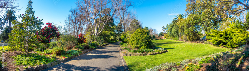 Fototapeta Beautiful panorama view of environment in Footscray Park with footpath, garden and different kinds of plants. Melbourne, VIC Australia.