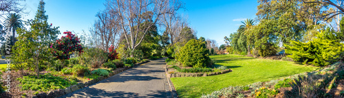 Fototapeta Beautiful panorama view of environment in Footscray Park with footpath, garden and different kinds of plants. Melbourne, VIC Australia. obraz