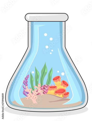 Fototapeta Biological Oceanography Corals Illustration
