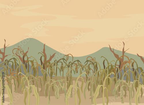Foto Corn Field Dying Crops Illustration