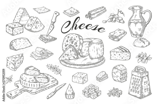 Fototapeta Cheese sketch. Hand drawn milk products, gourmet food slices, cheddar Parmesan brie. Vector breakfast vintage illustration pencil hand drawn obraz
