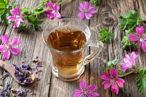 A cup of mallow tea with fresh malva sylvestris plant
