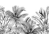 Tropikalna karta z palmami i liśćmi bananów. Czarny i biały. Ręcznie rysowane ilustracji wektorowych. - 270984877