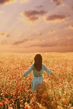 Brunette Woman Walking Through Flower Meadow.
