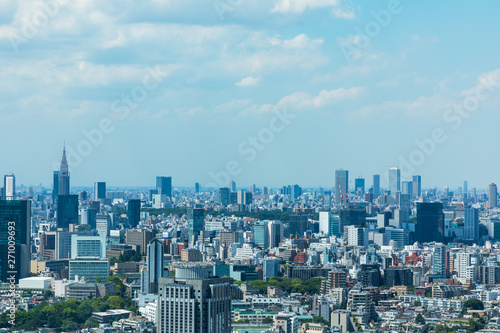 Foto op Canvas Pool (東京都-都市風景)高層ビルラウンジから望む青山方面の風景